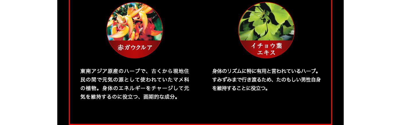 赤ガウクルア 東南アジア原産のハーブで、古くから現地住民の間で元気の源として使われていたマメ科の植物。身体のエネルギーをチャージして元気を維持するのに役立つ、画期的な成分。イチョウ葉エキス 身体のリズムに特に有用と言われているハーブ。すみずみまで行き渡るため、たのもしい男性自身を維持することに役立つ。