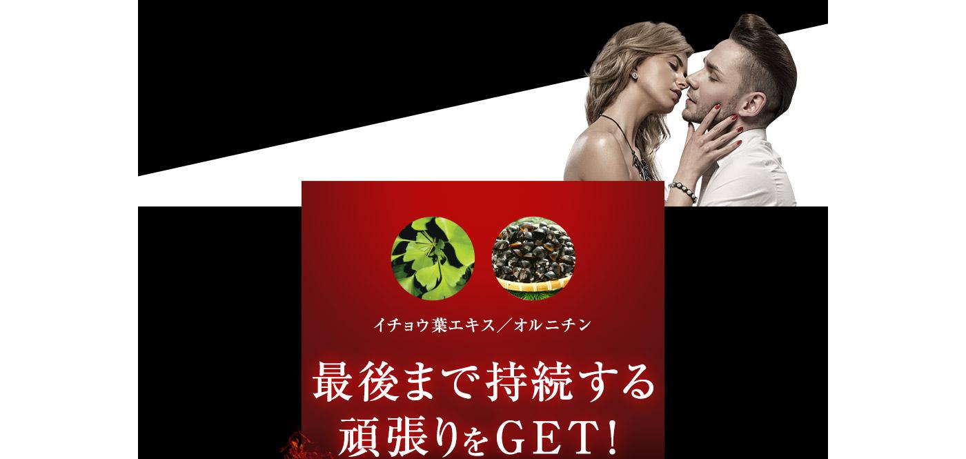 イチョウ葉エキス/オルニチン 最後まで持続する頑張りをGET!