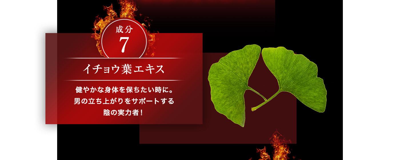 成分7 イチョウ葉エキス 健やかな身体を保ちたいときに。オトコの立ち上がりをサポートする陰の実力者!